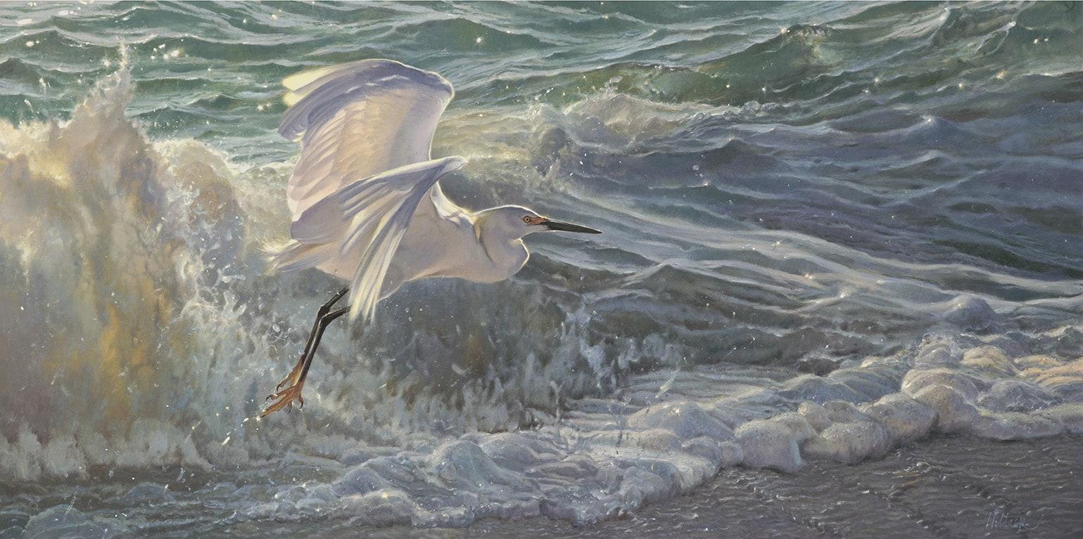 MH Egret